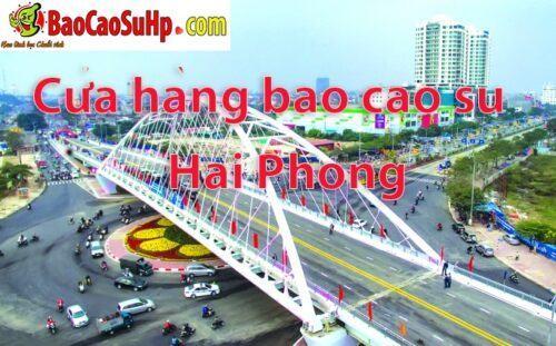 20180811235925 1400725 cua hang bao cao su hai phong 1 500x311 - Giới thiệu shop baocaosuhp.com