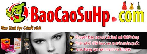 20180812000016 4243204 shop bao cao sextoy hai phong 500x185 - Giới thiệu shop baocaosuhp.com