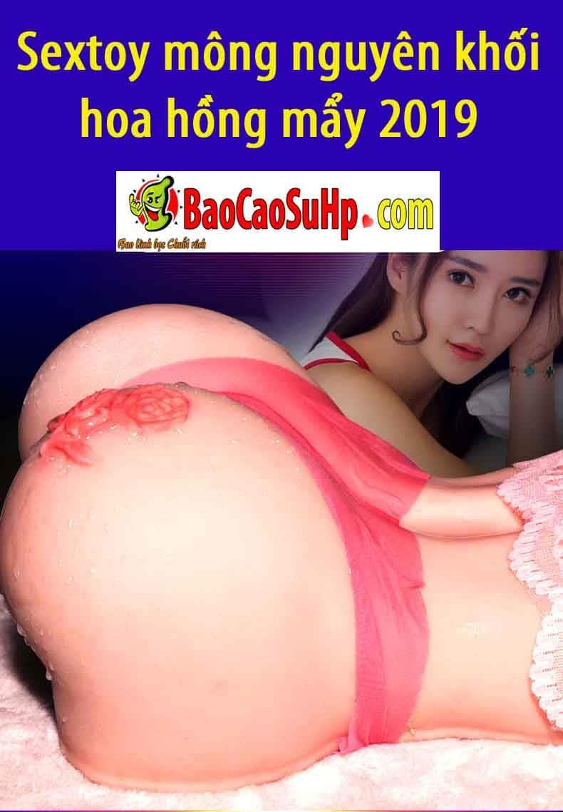 20190102212738 9597331 sextoy mong nguye khoi hoa hong may 2019 2 - Sextoy mông nguyên khối hoa hồng mẩy 2019