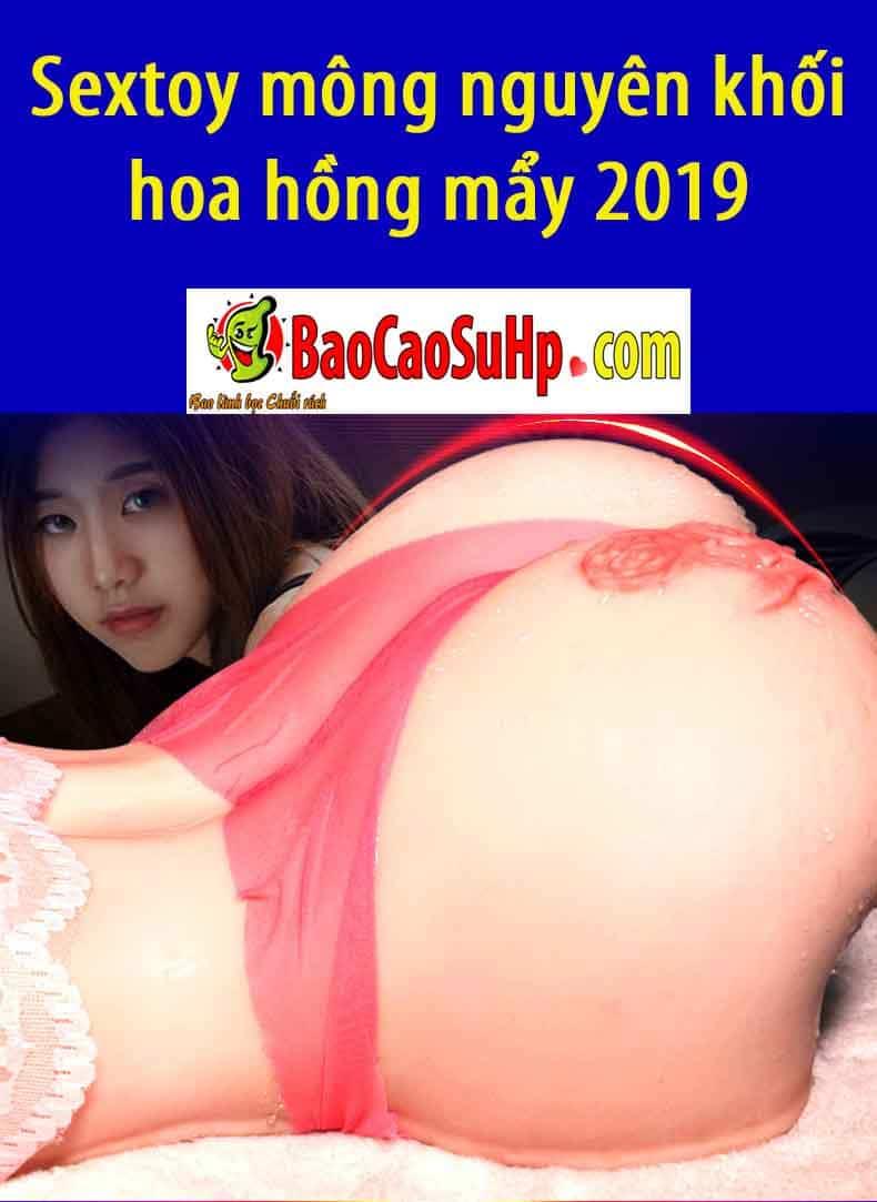 20190102212804 6024006 sextoy mong nguye khoi hoa hong may 2019 5 - Sextoy mông nguyên khối hoa hồng mẩy 2019