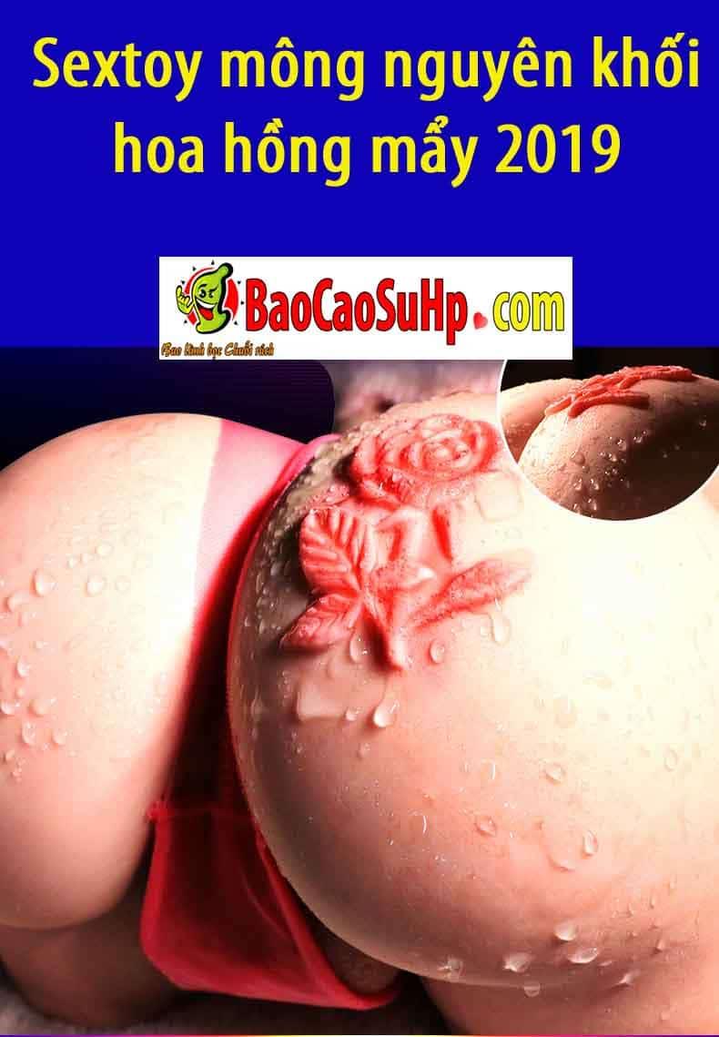 20190102212842 8917587 sextoy mong nguye khoi hoa hong may 2019 6 - Sextoy mông nguyên khối hoa hồng mẩy 2019