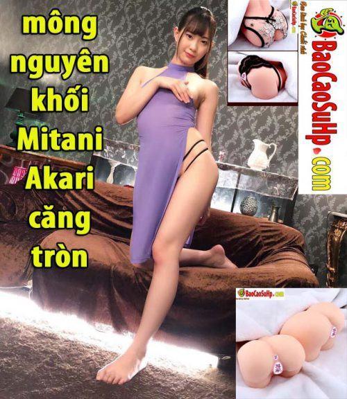 Sextoy mông nguyên khối Mitani Akari căng tròn