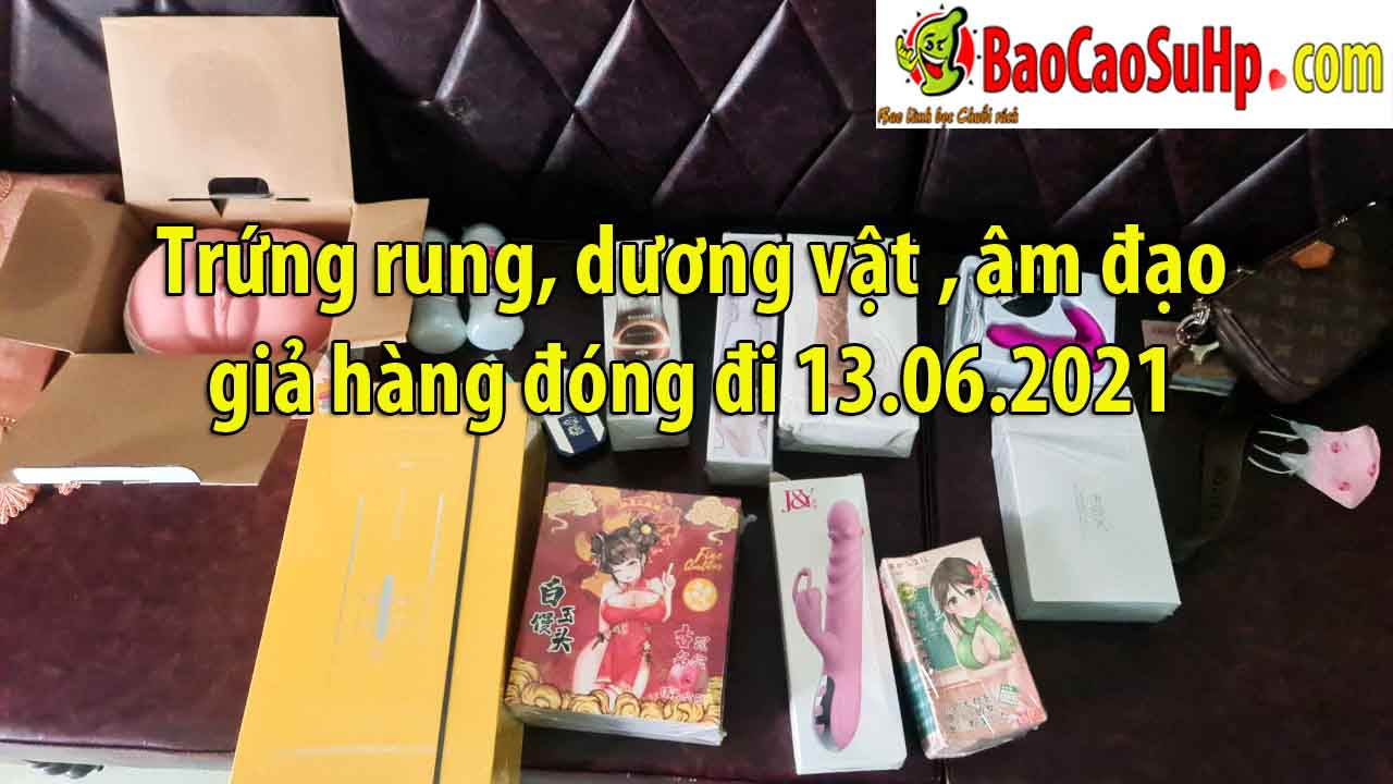 Trung rung duong vat am dao gia hang dong di 13062021 - Trứng rung, dương vật , âm đạo giả hàng đóng đi 13.06.2021